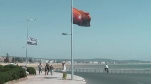 ninette&flag